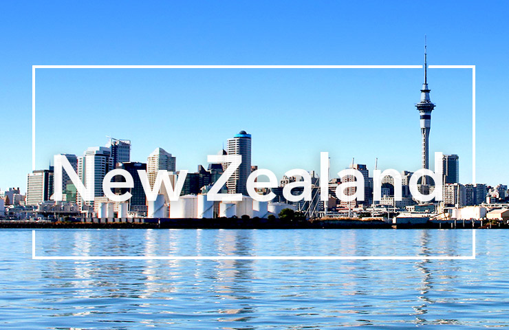 Study in New Zealand